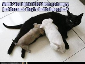 What? You think I'd let them go hungry just because they're behbehgoggies?