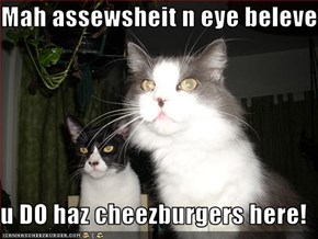 Mah assewsheit n eye beleve   u DO haz cheezburgers here!