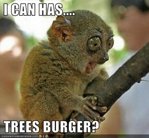 I CAN HAS....   TREES BURGER?
