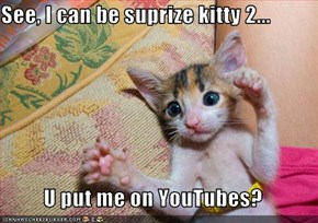 See, I can be suprize kitty 2...  U put me on YouTubes?