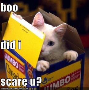 boo did i scare u?