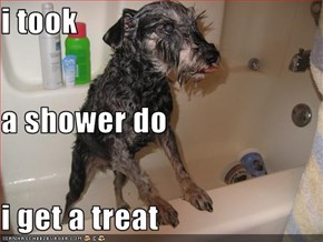 i took a shower do i get a treat