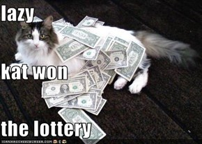 lazy kat won the lottery