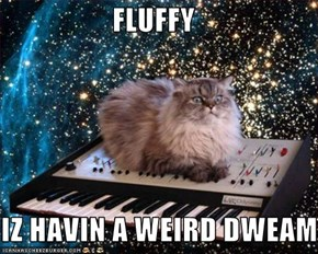 FLUFFY  IZ HAVIN A WEIRD DWEAM