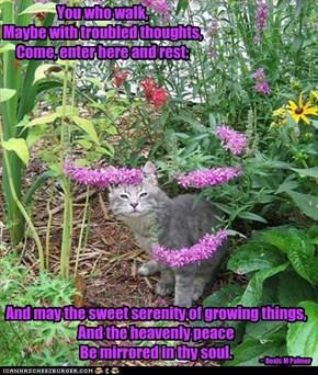 Garden Sanctuary - Doxis M Palmer