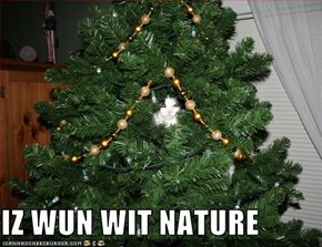 IZ WUN WIT NATURE