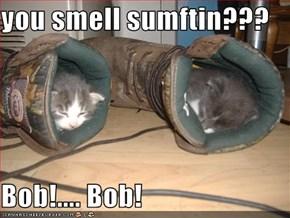 you smell sumftin???  Bob!.... Bob!