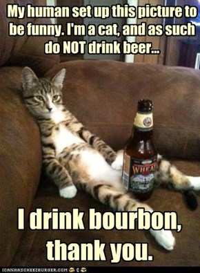 My human set up this picture to be funny. I'm a cat, and as such do NOT drink beer...