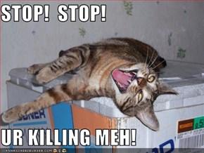 STOP!  STOP!  UR KILLING MEH!