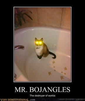 Beware of Bojangles