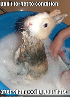Don't forget to condition  after shampooing your hare.