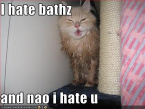 I hate bathz  and nao i hate u