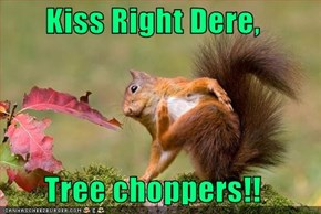 Kiss Right Dere,  Tree choppers!!