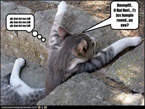Ummpfff.. O Hai Nuri... I'z jes hangin round...an you?