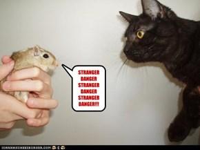 STRANGER DANGER STRANGER DANGER  STRANGER DANGER!!!