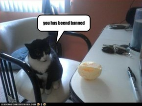 you has beend banned