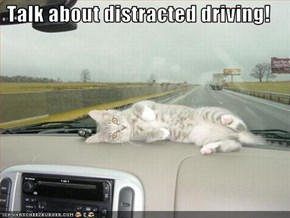 Talk about distracted driving!