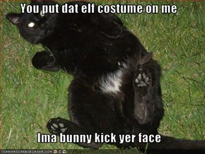 You put dat elf costume on me  Ima bunny kick yer face