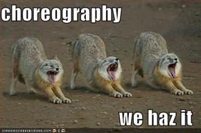 choreography  we haz it