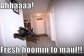 Ahhaaaa!  Fresh hoomin to maul!!