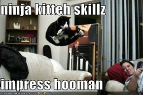 ninja kitteh skillz  impress hooman