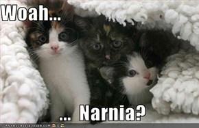 Woah...                 ...  Narnia?