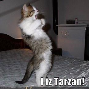 I iz Tarzan!
