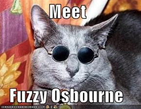 Meet  Fuzzy Osbourne