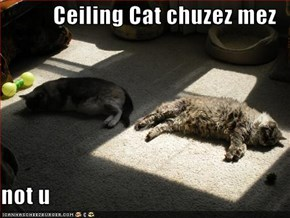 Ceiling Cat chuzez mez   not u