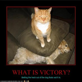 WHAT IS VICTORY?
