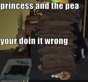 princess and the pea your doin it wrong