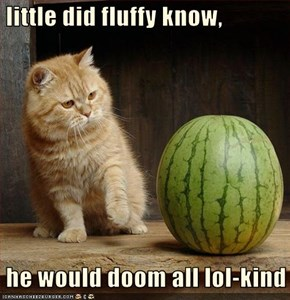 little did fluffy know,   he would doom all lol-kind