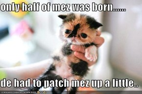 only half of mez was born......  de had to patch mez up a little..