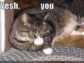 Yesh,            you