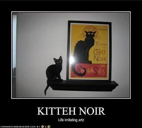 KITTEH NOIR