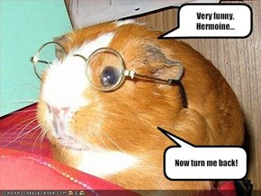Very funny, Hermoine...