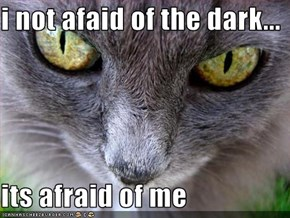 i not afaid of the dark...  its afraid of me