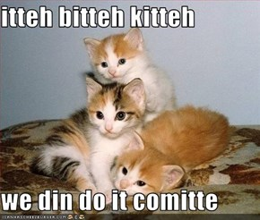 itteh bitteh kitteh  we din do it comitte
