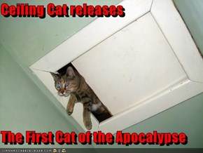 Ceiling Cat releases  The First Cat of the Apocalypse
