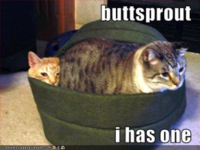 buttsprout  i has one