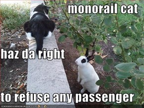 monorail cat haz da right to refuse any passenger
