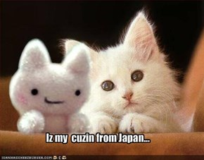 Iz my  cuzin from Japan...