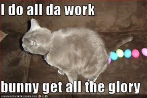 I do all da work  bunny get all the glory