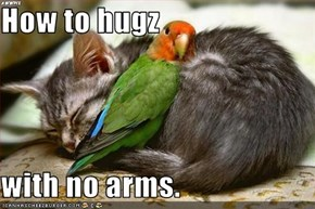 How to hugz  with no arms.