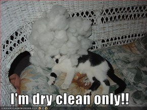 I'm dry clean only!!