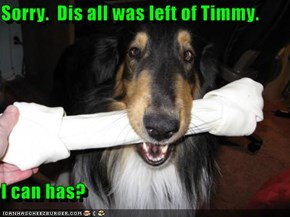 Sorry.  Dis all was left of Timmy.    I can has?