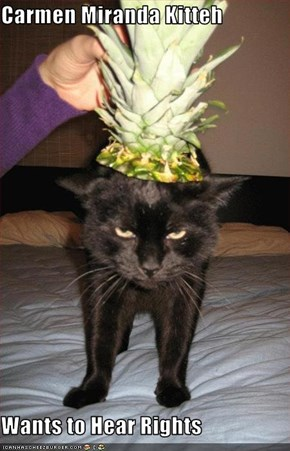 Carmen Miranda Kitteh  Wants to Hear Rights