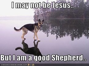 I may not be Jesus..  But I am a good Shepherd..