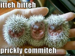 itteh bitteh  prickly commiteh