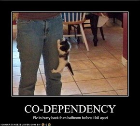 CO-DEPENDENCY